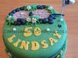 Cambrian Cake Designs